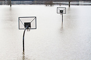 flood of the Rhine on February 5th. 2021, flooded basketball court on the banks of the river Rhine in the district Poll, Cologne, Germany.<br /> <br /> Hochwasser des Rhein am 5. Februar 2021, ueberfluteter Basketballplatz in den Rheinwiesen im Stadtteil Poll, Koeln, Deutschland.