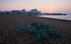 © Licensed to London News Pictures. 23/10/2016. Southsea, UK.  A fine start to the day at sunrise over South Parade Pier in Southsea this morning, where the Great South Run 2016 event is being held today.  Photo credit: Rob Arnold/LNP