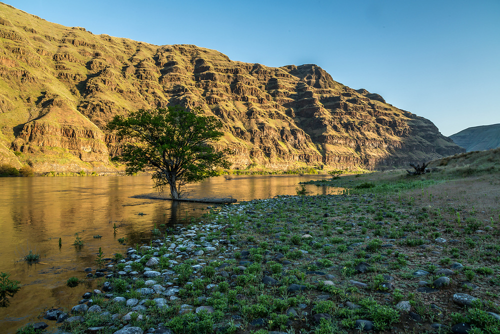 Morning light peaks over the upper Idaho Hills of Hells Canyon lighting the Washington side on a beautiful spring morning.  Licensing and Open Edition Prints.