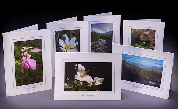The NH Woodlands collection includes 6 greeting cards, one of each design:  pink lady's slipper, trillium, winter in the mountains, small whorled pogonia, and the WMNF Pemigewasset River.<br /> <br /> Artemis Photo Greeting Cards featuring NH native flora and fauna and historic sites. The cards are made exclusively in NH made from 100% FSC recycled paper, manufactured with wind and water power, and are archival acid free paper. Each card includes details on the back about the image, including interesting anecdotes, historic facts, conservation status, and recipes.
