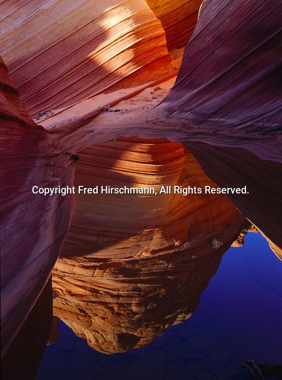 Wind-scupted Navajo Sandstone, reflected in desert pool, Paria Canyon-Vermilion Cliffs Wilderness, Vermilion Cliffs National Monument, Arizona.