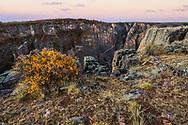Black Canyon of the Gunnison Narional Park at dawn, Colorado, USA