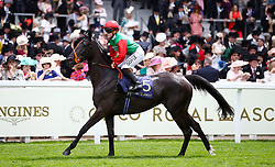 Billesdon Bess ridden by Jockey Hollie Doyle goes to post for the Duke Of Cambridge Stakes