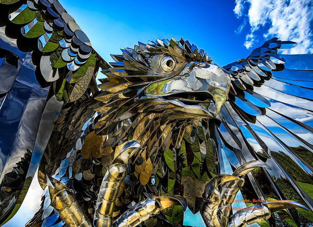 Raptor Strike: A stainless steel sculpture of an eagle, is set to strike, Chilliwack British Columbia, Canada.   <br />                   <br /> Created by Kevin Stone.