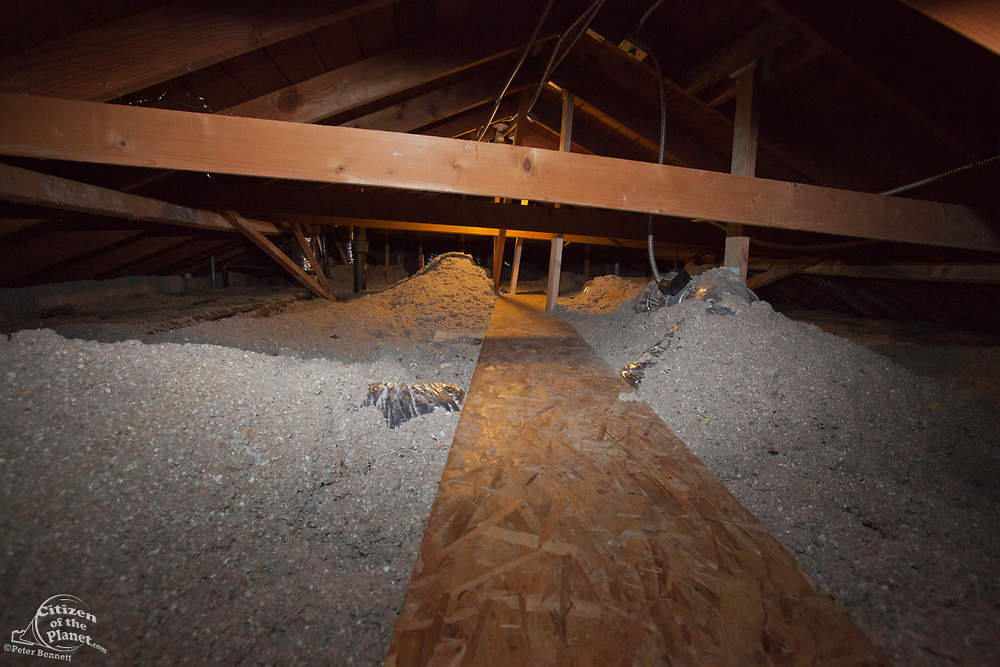 Loose-fill insulation in attic of Green home that is off the grid. Solar power and a rainwater harvesting system supply all the energy and water for this home in Los Angeles, California, USA