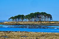 France, Morbihan (56), Golfe du Morbihan, Baie de Quiberon, Locmariaquer, Plage St. Pierre, Pointe er Hourel // France, Morbihan (56), Gulf of Morbihan, Quiberon Bay, Locmariaquer, Beach St. Pierre, Pointe Er Hourel