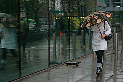 Woman with Mona Lisa umbrella walks past discarded & damaged umbrella at the bottom of Euston Tower London. Locals know this area as windy corner & the umbrellas graveyard...© under license to London News Pictures. 08/11/2010 Londoners brave the bad weather armed with the umbrella