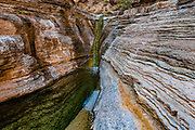 A green pool in Mohawk Canyon hiked from Colorado River Mile 171.9. Day 13 of 16 days rafting 226 miles down the Colorado River in Grand Canyon National Park, Arizona, USA.