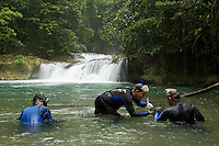 Marine biologists Mark Allen, Mark Erdmann, and Gerry Allen (L to R) collecting freshwater fish specimens in a remote river on the Fak Fak Peninsula, Papisol Area.