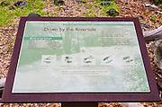 Interpretive sign at Happy Isles, Yosemite Valley, Yosemite National Park, California USA