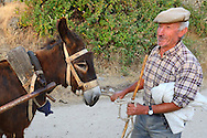 old farmer with his donkey near the Faia Brava reserve, in the Western Iberia rewilding area,  Coa valley, Portugal.