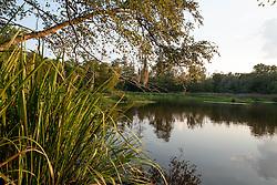 Photo taken where Grand Lake divides into 2 lakes at Camp Strake, Conroe, Texas