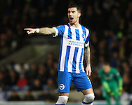 Brighton defender Liam Ridgewell during the Sky Bet Championship match between Brighton and Hove Albion and Brentford at the American Express Community Stadium, Brighton and Hove, England on 5 February 2016. Photo by Bennett Dean.