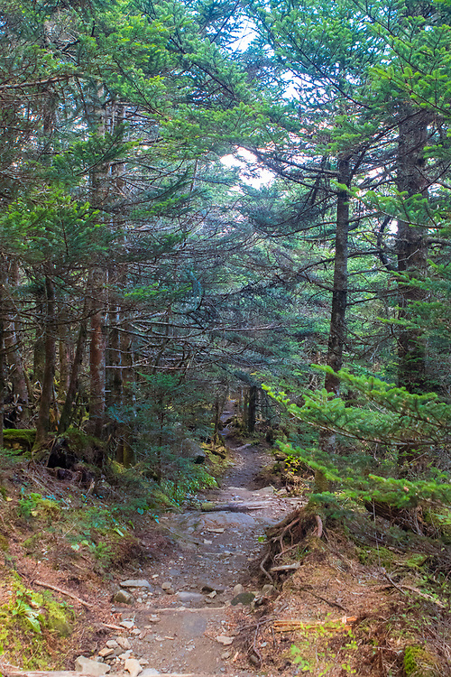 October 13, 2017: A portion of the Appalachian Trail at Clingmans Dome.