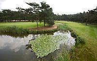 NUNSPEET - Oost 3 en 6 op Golfbaan RIJK VAN NUNSPEET, COPYRIGHT KOEN SUYK
