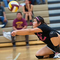 102213       Cable Hoover<br /> <br /> Rehoboth Lynx Talia Bowman (7) drops to her knee to save a serve from the Navajo Prep Eagles Tuesday at Rehoboth High School.