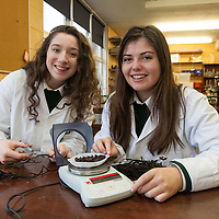 Aoibhe Cronin and Ciara McInerney from Scoil Mhuire, Ennistymon, investigating the potential of North Clare seaweeds Fucus vesiculosus and Fucus serratas as biomass for energy production based on their calorific value, as determined by bomb calorimetry.