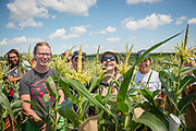 Graduated students at the University of Wisconsin Madison in the research fields gather research and taste corn with Bill Tracy.