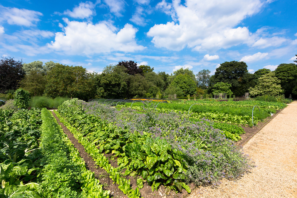 Raymond Blanc's organic vegetable and herb garden at his hotel Le Manor Aux Quat' Saisons in Oxfordshire, UK