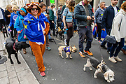 Pet owners and their dogs take part in an anti Brexit Wooferendum rally on October 07, 2018 in London, England to protest against Britain leaving the European Union.