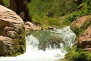 Tricia Cronin (release on file) journals along Havasu Creek, Havasupai Indian Reservation, Grand Canyon National Park, Arizona, US