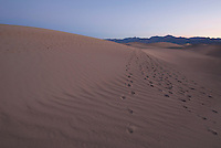 Footprints on the Mesquite Flat sand dunes at sunrise, Death Valley National Park, California
