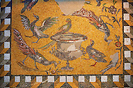 Birds around a  Daphne vase. 1st to 3rd century SD Roman Mosaic from Antioche, Turkey. Louvre Museum, Paris .<br /> <br /> If you prefer to buy from our ALAMY PHOTO LIBRARY  Collection visit : https://www.alamy.com/portfolio/paul-williams-funkystock/roman-mosaic.html - Type -   Louvre    - into the LOWER SEARCH WITHIN GALLERY box. Refine search by adding background colour, place, museum etc<br /> <br /> Visit our ROMAN MOSAIC PHOTO COLLECTIONS for more photos to download  as wall art prints https://funkystock.photoshelter.com/gallery-collection/Roman-Mosaics-Art-Pictures-Images/C0000LcfNel7FpLI