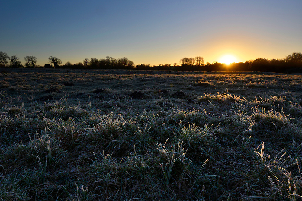 Winter's dawn over Cow Common, Chilbolton, Hampshire