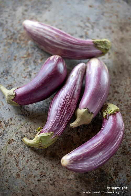 Aubergine 'Listada de Gandia' - egg plant. Solanum melongena