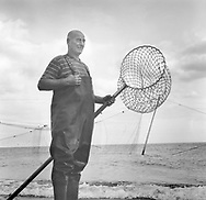 Salmon netter Dave Pullar pictured standing at one of his 'jumper' nets on the sands at Lunan Bay, Angus.<br /> Ref. Catching the Tide 13/01/06 (28th August 2001)<br /> <br /> The once-thriving Scottish salmon netting industry fell into decline in the 1970s and 1980s when the numbers of fish caught reduced due to environmental and economic reasons. In 2016, a three-year ban was imposed by the Scottish Government on the advice of scientists to try to boost dwindling stocks which anglers and conservationists blamed on netsmen.