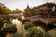 Sunrise over the Huxinting Teahouse in Yu Yuan Gardens Shanghai, China