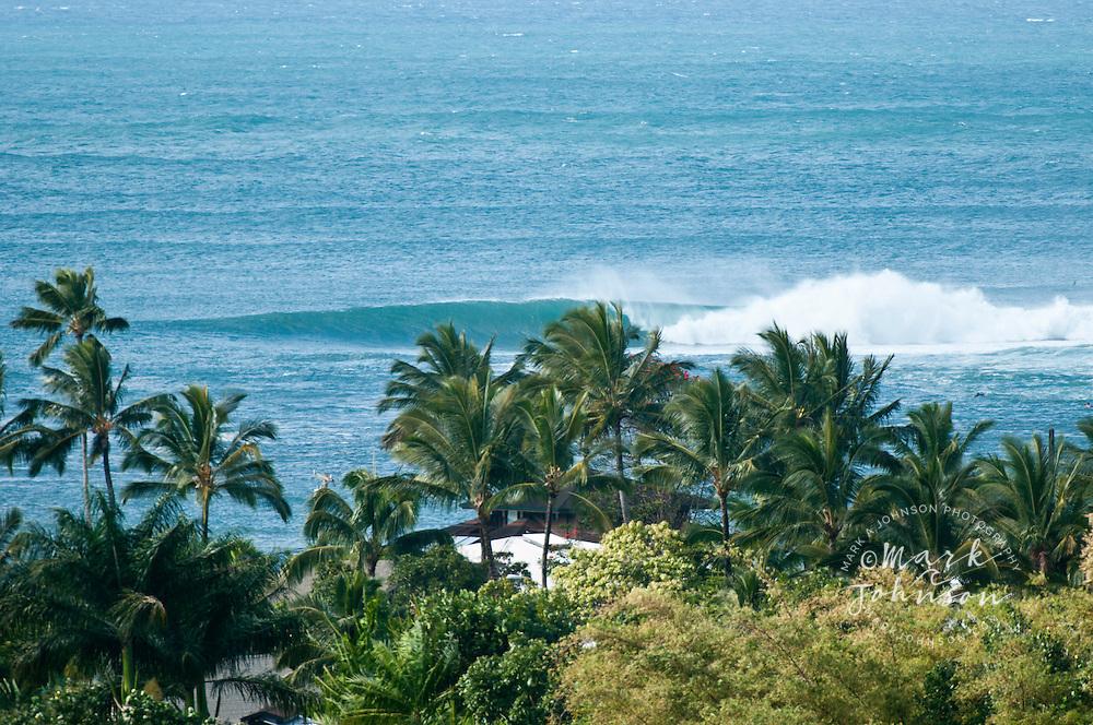 Peeling wave seen through palm trees, Hawaii