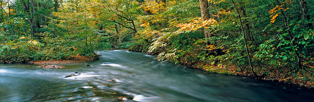 Two small streams merge on the Hachimental Plateau in northern Honshu, Japan.