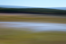 abstract landscape in East Hampton, NY