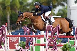 Pessoa Rodrigo (BRA) - Let's Fly<br /> Horseware GP CSI 2*<br /> Wellington 2012<br /> © Hippo Foto - Cealy Tetly