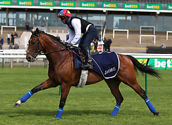 Cracksman ridden by Frankie Dettori on the gallops during day one of The Bet365 Craven Meeting at Newmarket Racecourse, Newmarket.