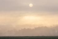 The sun shines through morning fog in Pine Island N.Y., on Oct. 21, 2020.