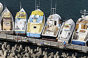 Boats in the Fisheries Complex, Bridgetown, Barbados