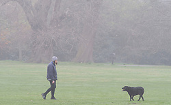 © Licensed to London News Pictures. 07/04/2019.<br /> Greenwich, UK. Sunday morning dog walker,A foggy damp morning in London and the South East as people are out and about in Greenwich Park, Greenwich, London.  Photo credit: Grant Falvey/LNP