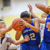 Rehoboth Lynx Tyra West (10) attempts to grab the ball away from Laguna Acoma Hawk Talia Pantiamo (22) Tuesday at Rehoboth High School.