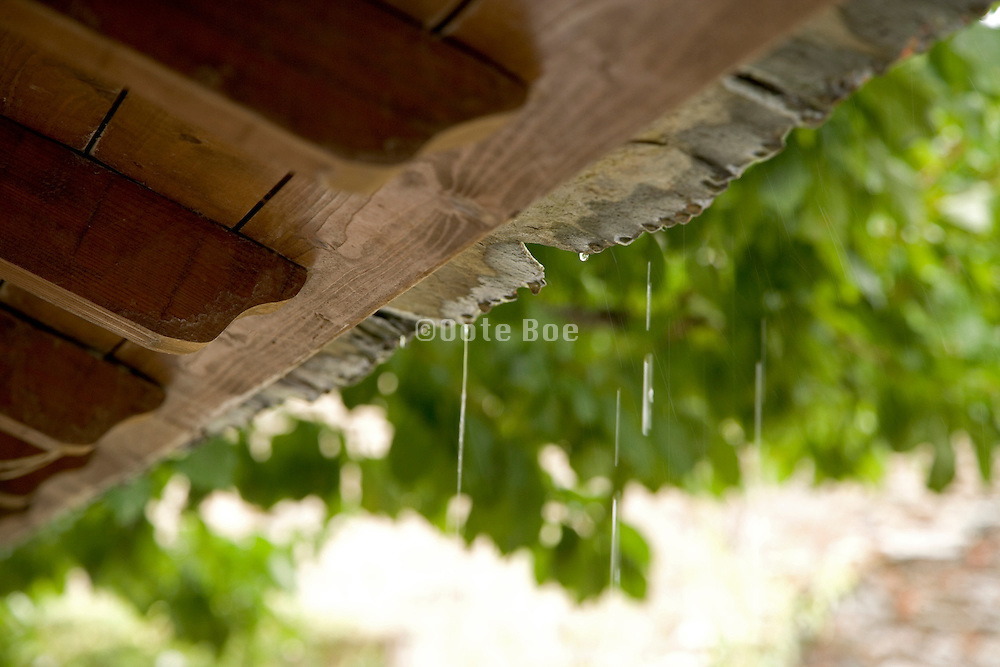 close up of rain falling down of a roof edge