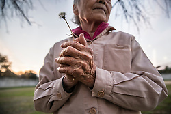 O (89) holds a dandelion on the exercise grounds at Fukushima Prison for women in Fukushima prefecture, Japan.<br /> She is serving her second prison sentence for stealing a pack of strawberry, cold medicine, and a pair of glasses at a supermarket. She was imprisoned for the first time at 84.