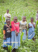 Children planting vegetables at a school, a project of the Babungo Foundation run by local villagers in Cameroon
