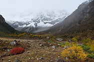 Autumn colours and sceneries in the U-shaped valley, Baima Snow Mountain Nature reserve, Yunnan, China