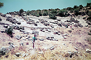 Tourists on sightseeing trip at archaeological site, Kos, Greece 1970s