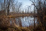 Duck Camp Sunday, Oct. 21, 2012, in Au Gres, Michigan..Photo by Scott Morgan 2012