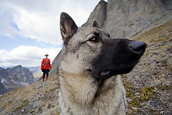 Mountie dressed in RCMP Red Serge with dog in the Tombstone Mountains, Yukon