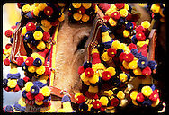 Detail of mules in festive bridles adorned with colorful balls at the Feria de Abril; Seville. Spain