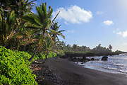 """Black sand beach in Hana Bay on the northeast coast of Maui, in the town of Hana.<br /> .....<br /> The island of Maui is the second-largest of the Hawaiian Islands and is the 17th largest island in the United States. Maui is part of the State of Hawaii and is the largest of Maui County's four islands, bigger than Molokaʻi, Lānaʻi, and unpopulated Kahoʻolawe. Native Hawaiian tradition gives the origin of the island's name in the legend of Hawaiʻiloa, the navigator credited with discovery of the Hawaiian Islands. According to that legend, Hawaiʻiloa named the island of Maui after his son, who in turn was named for the demigod Māui. The earlier name of Maui was ʻIhikapalaumaewa. The Island of Maui is also called the """"Valley Isle"""" for the large isthmus between its northwestern and southeastern volcanoes and the numerous large valleys carved into both mountains."""