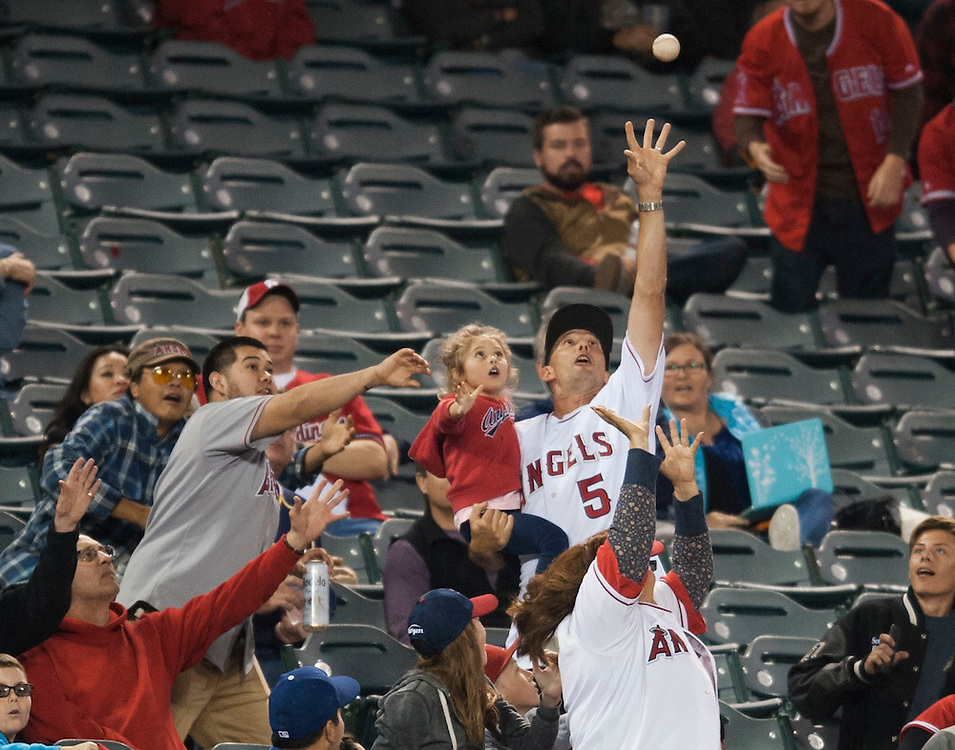 An Angels fan tries to grab a could ball during the Angels' 8-1 loss to the St Louis Cardinals Tuesday at Angel Stadium.<br /> <br /> ///ADDITIONAL INFO:   <br /> <br /> angels.0511.kjs  ---  Photo by KEVIN SULLIVAN / Orange County Register  --  5/10/16<br /> <br /> The Los Angeles Angels take on the St. Louis Cardinals at Angel Stadium Tuesday.<br /> <br />  5/10/16